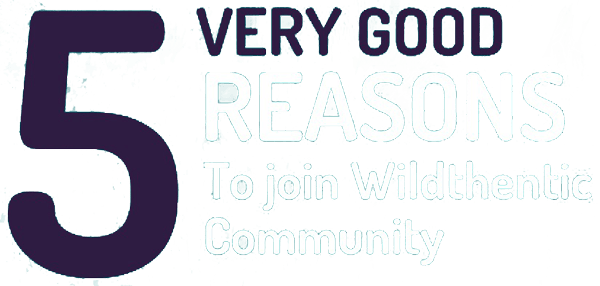 5 very good reasons to join us